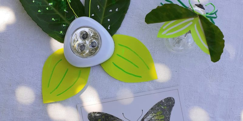 Les Polinsons - Les insectes lumineux